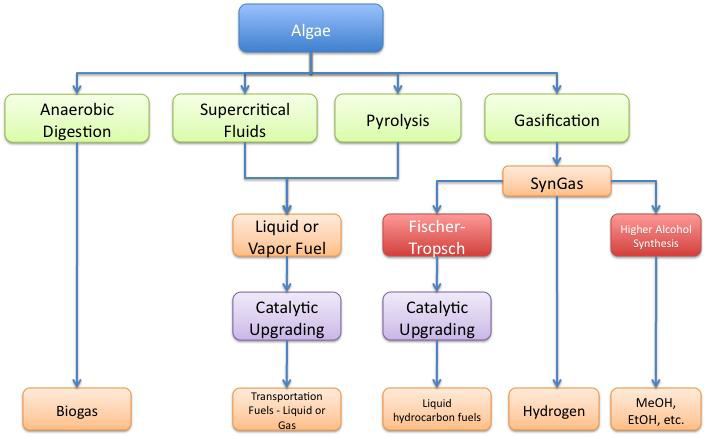 Al Fin Energy: Algae to Biofuels Pathways