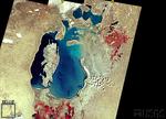 Aral1999