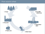 Wood-to-wheel