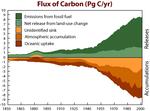 Carbon Flux