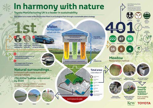 30_Kew_Infographic
