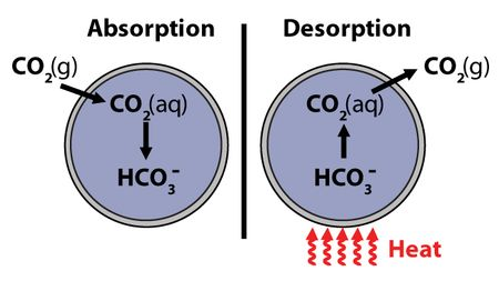 Absorption-desorption_650