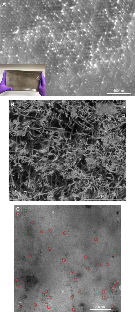 photo image Mattershift scales up CNT membranes; potential for zero-carbon fuels for less than fossil