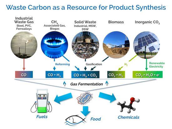 Waste-Carbon