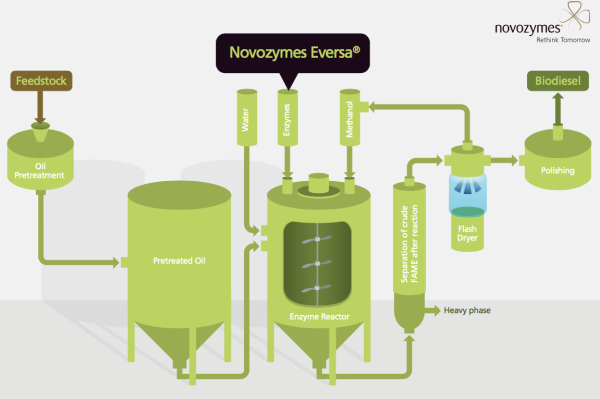 novozymes launches commercial enzyme technology to convert waste oils into biodiesel