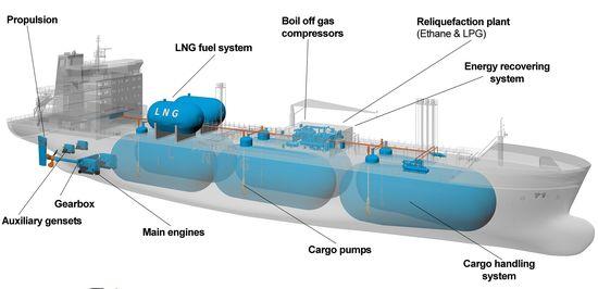 Evergas scope