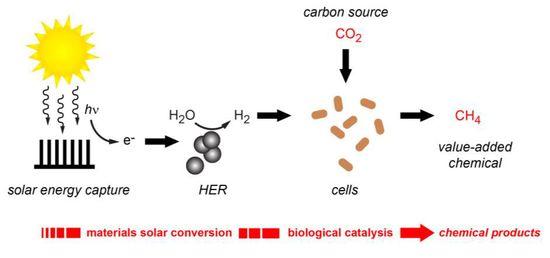 Peidong-Yang-CJC-Bioinorganic-Solar-to-Chemical-Text