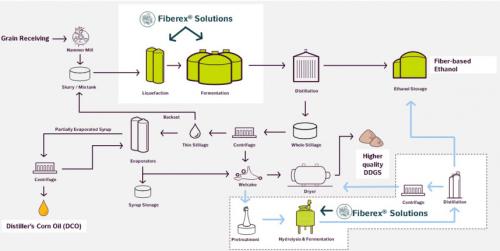 Fiberex_infographic_plant